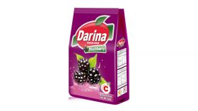 Darina Instant Drink Blackberry 750 Gm