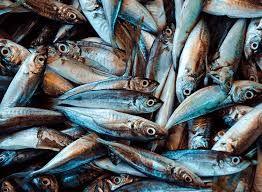 Seama Fish 1Kg