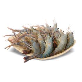 Defrosted Shrimps 1Kg