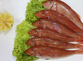 Sultan Ibrahim Fish 1Kg