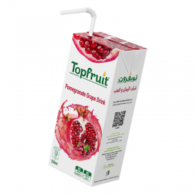 Top Fruit Juice Pomegranate Grape 250 ml x 24
