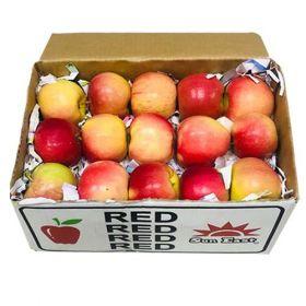 Apple Red Iran Small Ctn