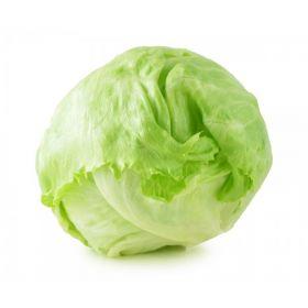 Lettuce Iceberg Piece