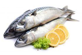 Mackerel Fish 1Kg