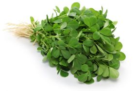 Methi Leaf Bunch